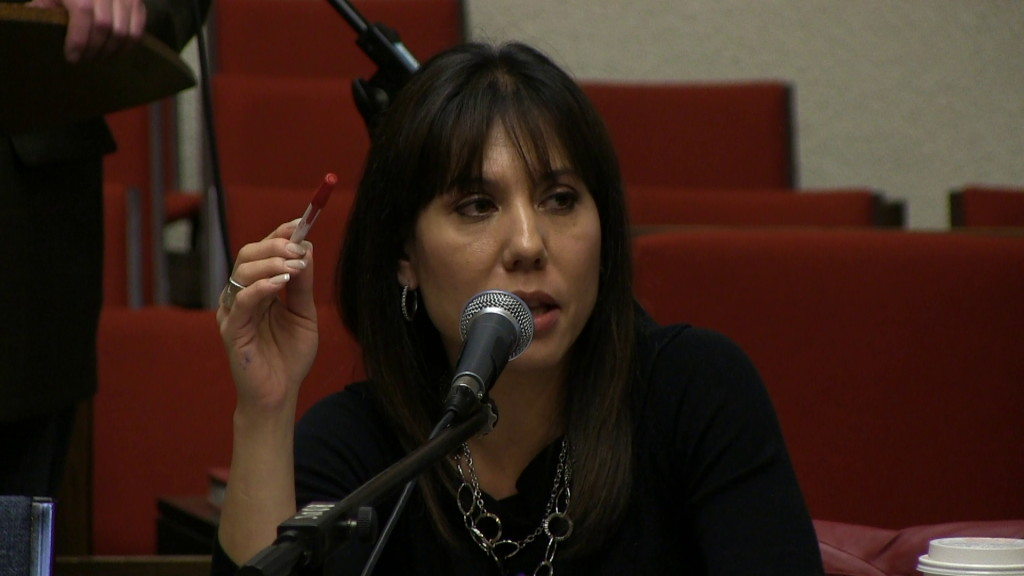 October 8, 2013: Leah Gazan, of Idle No More, put First Nations' concerns front and centre at the Speak Up For Democracy Town Hall Meeting in Winnipeg. Photo: Paul S. Graham